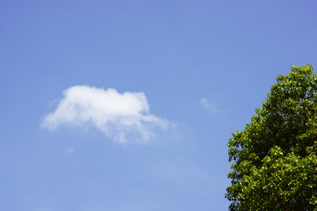 hygenic: Blue sky and white clouds Stock Photo