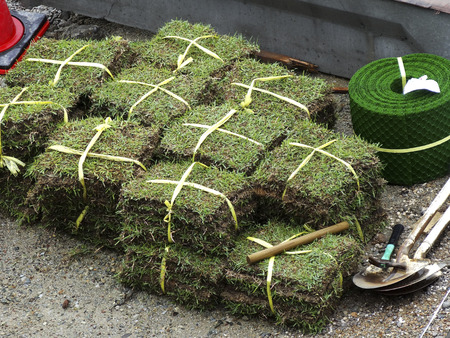 revetment: Lawn-covered construction of revetment Stock Photo