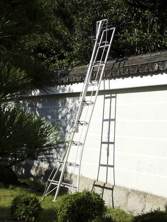stepladder: Stepladder for Ueki pruning Stock Photo