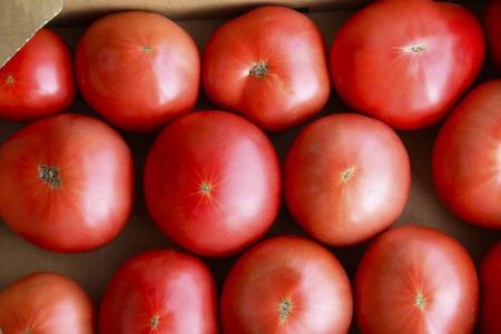 green vegetable: Tomato