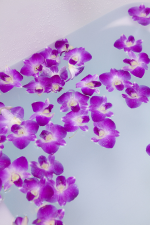 esthetician: Orchid floating in the bathtub