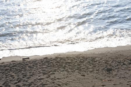 sandy: Sandy