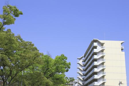 新鮮な緑の葉が付いているアパート