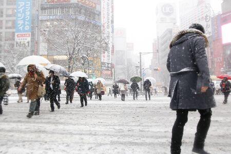 snowing: Its snowing Shibuya scramble crossing Editorial