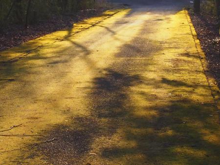 the setting sun: Road setting sun and shadow