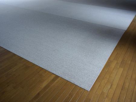 carpet and flooring: Flooring of carpet