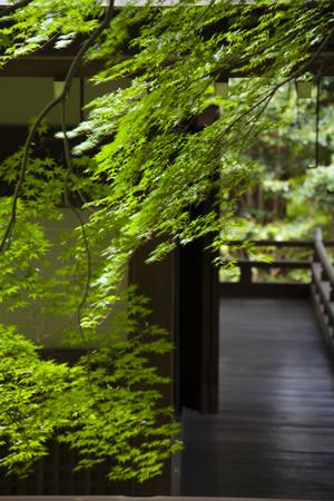 main: The main hall of Hirokawa