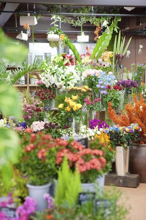 Blumenladen Standard-Bild - 79089003