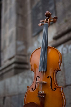 violin with rustic background