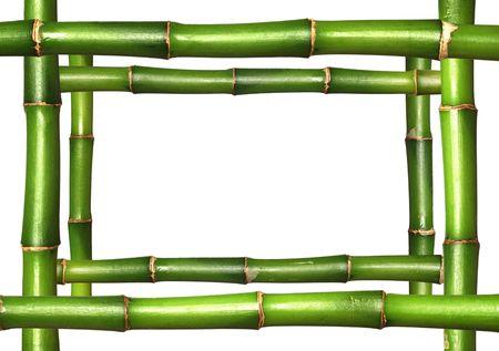 Bamboo stems frame border photo