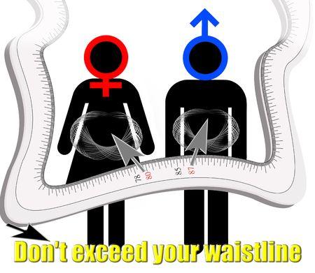 허리의 잘룩 한 선: Dont exceed your waistline