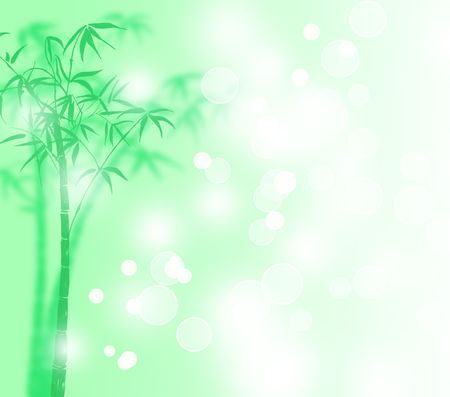 Lucky bamboo with snow poster  Stock Photo - 6331207