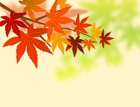 Abstract oak leaf background photo