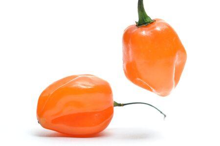 Isolated fresh hot pepper