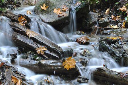 Beautiful Waterfall in Harrison BC Canada  photo