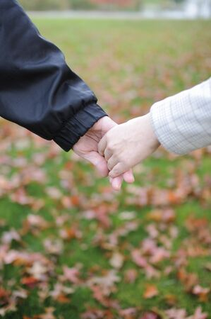Lovers couple holding hands in a park photo