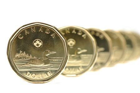 Canadian one dollar coin pattern photo