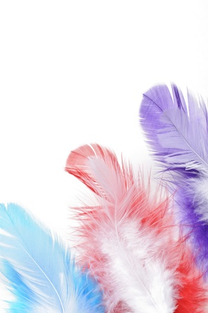 Colorful feathers on white background Stock Photo - 16959712