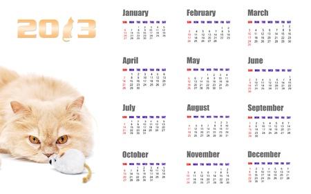 2013 calendar for cat design
