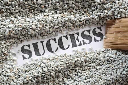 Success -- Treasure Word Series Stock Photo - 17124694