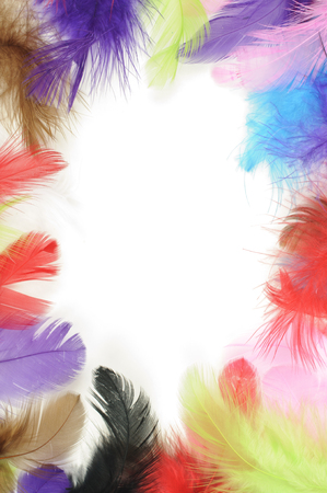 Colorful feathers border on white background photo