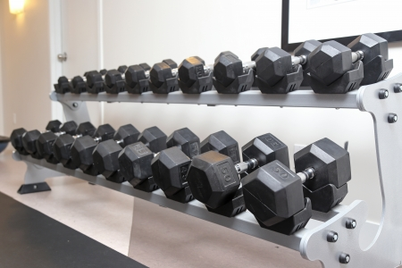 Dumb bells lined up in a fitness studio photo