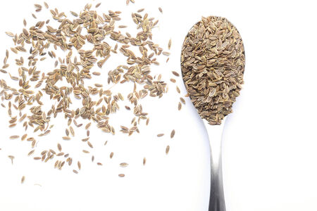 dill seed: Dill seed on spoon Stock Photo