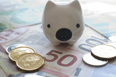 canadian cash: Piggy bank on Canadian money background Stock Photo