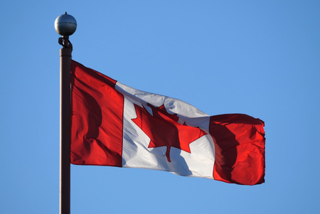 canadian flag: Waving Canadian flag against blue sky for celebrating Canada 150 years