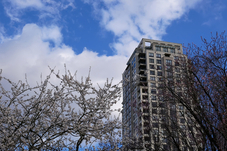 Coquitlam, BC, Canada - March 31, 2019 : High rise building and blowing tree leaf against blue cloudy sky