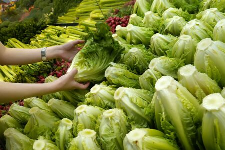 Woman selecting green lettuce in grocery store Archivio Fotografico