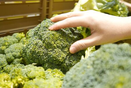 Motion of woman's hand picking broccoli inside superstore Archivio Fotografico - 147603978