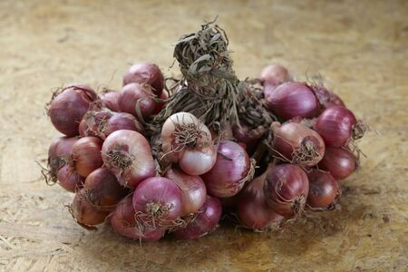 Red shallot onions a group on wood Archivio Fotografico