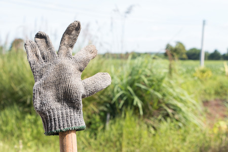 Old dirty gloves after use on green background. Archivio Fotografico