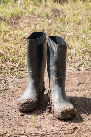 Dirty rubber boots in farm.