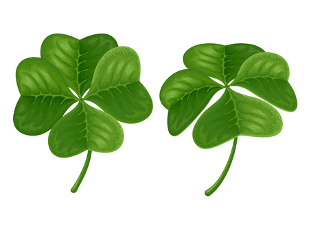 saint patrick's day: Green four-leaves shamrock. Symbol of luck on Saint Patricks Day. Vector Illustration. Isolated on white background. Illustration