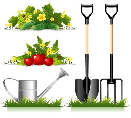 Set van tuinieren gerelateerde items en groenten. Vector. Vector Illustratie
