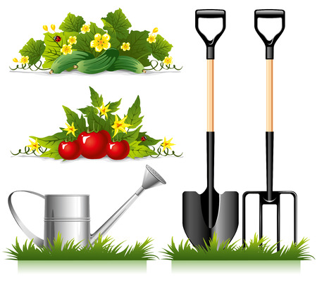 Set of gardening related items and vegetables. Vector.