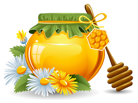 golden daisy: Honey with a wooden stick and daisies. Vector.