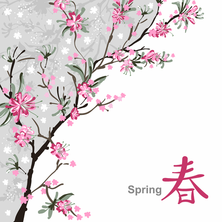 cherry pattern: Japanese painting of flowers, background with sakura blossom