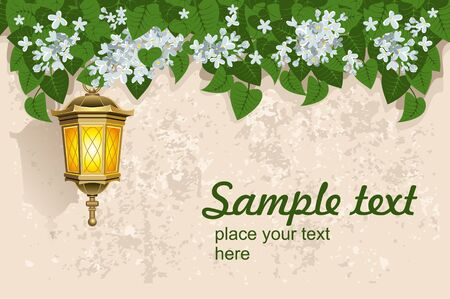 Grunge background with white lilacs and street lantern. Detailed vector. Illustration