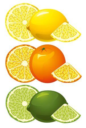 citrus fruits: Refreshing citrus fruits, whole and sliced. Isolated on white.