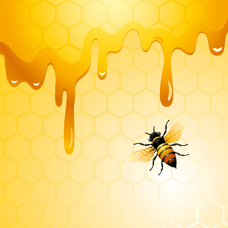 Bee on honeycomb. Background for you design. Illustration