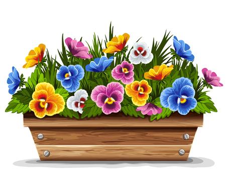 vaso di fiori in legno con viole del pensiero multi colorato. Illustrazione vettoriale. Vettoriali