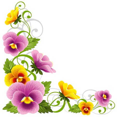 pansy: Gentle floral design element with pansy Illustration