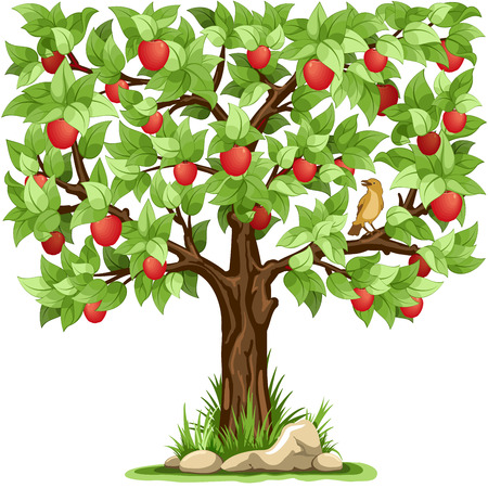 green apples: Cartoon apple tree isolated on white background Illustration