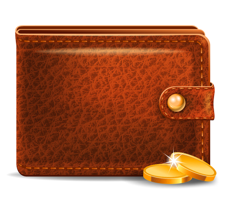 brown leather: Brown leather wallet with money Illustration