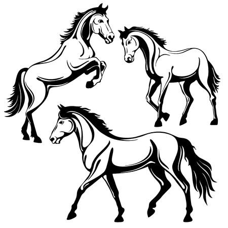 Set von drei Pferden. Schwarz-weißes Bild, isoliert auf weißem Hintergrund, Vektor-Illustration. Vektorgrafik
