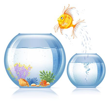 Samotna goldfish skacząca do innego akwarium, która większa i piękniejsza niż pierwsza