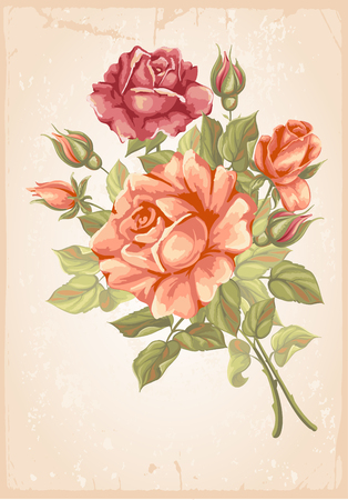 rose bouquet: Luxurious retro style floral greeting card - roses. Vector illustration. Illustration
